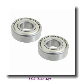 RIT BEARING 87505  Ball Bearings